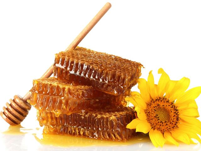 Резултат с изображение за за меда пчели